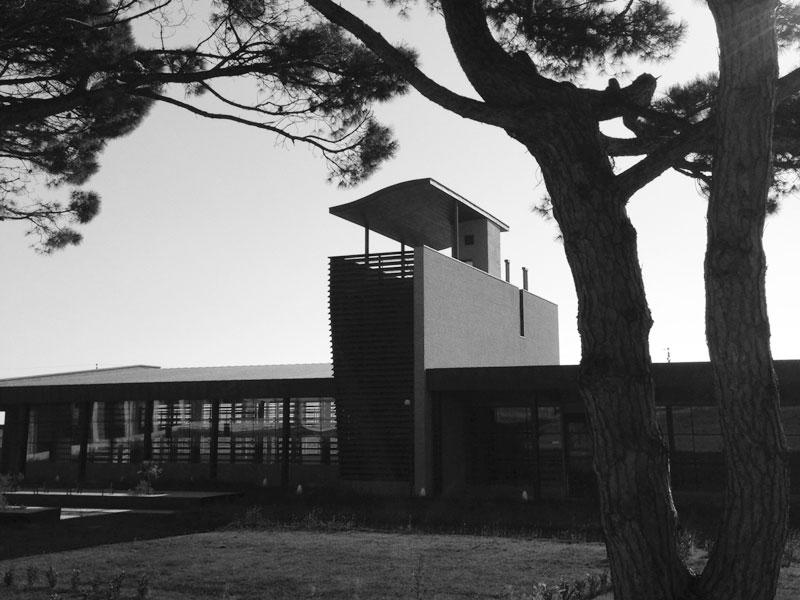 nuovo-museo-altino